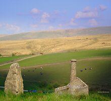 Dartmoor Mine by Charmiene Maxwell-batten