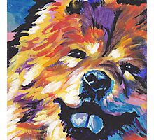 Chow chow Dog Bright colorful pop dog art Photographic Print