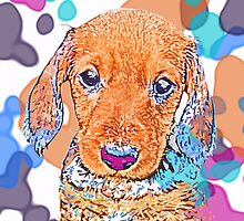 Watercolor Doxie by CanisPicta