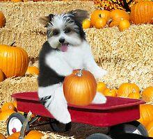 I Can Just Taste This Pumpkin Now  by ✿✿ Bonita ✿✿ ђєℓℓσ