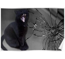 MEOWW-CAT'S BROKEN MIRROR -7YEARS BAD LUCK-NO - SUPERSTITION AIN'T THE WAY. Poster