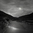 WALK WITH THE LIGHT OF THE MOON by leonie7