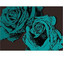 roses turquoise Photographic Print