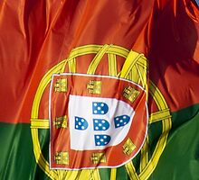 Waving Flag of Portugal From 2014 Winter Olympics by pjwuebker