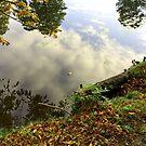 Reflection in the Lake #5 by HeklaHekla