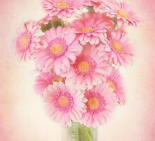Beautifully staggered Bouquet of Daisies. by carolynrauh