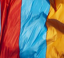 Waving Flag of Armenia From 2014 Winter Olympics by pjwuebker