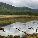 Loch Gamnha by VoluntaryRanger