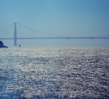 san francisco bay and the bridge by melissa miller