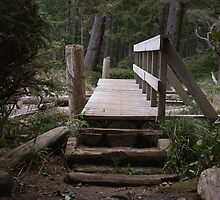 Bridge Over a Creek Mouth (French Beach Provincial Park, Vancouver Island, British Columbia, Canada) by Edward A. Lentz