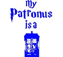 my-patrons-is-a-tardis Photographic Print