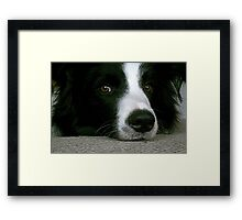Here's looking at you looking at me.......... ! Framed Print