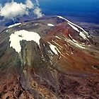 Mt Kilimanjaro - Tanzania, Africa by Bev Pascoe