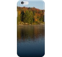 Bright and Sunny Fall Reflections iPhone Case/Skin