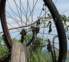 old bicycle in the meadow by spetenfia