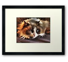 Cookie Kitty Framed Print