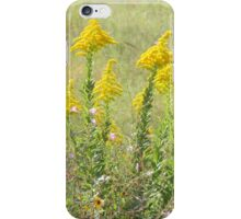 Guess What's Blooming? GOLDENROD! iPhone Case/Skin