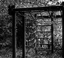 10.10.2014: Abandoned Playground II by Petri Volanen