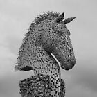 Horse Head, Newton Mearns by biddumy