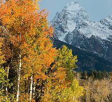 Autumn by Gary Lengyel