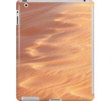 Wind Sculpted Sands iPad Case/Skin