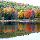 Autumn Reflection by Vicki Spindler (VHS Photography)