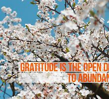 Gratitude is the open door to abundance by ak4e