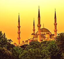 Blue Mosque in Gold Light by solnoirstudios