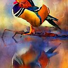 Mandarin Reflections by Bunny Clarke