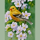 Female Goldfinch Phone Case by csforest
