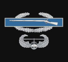 Combat Infantry Badge and Air Assault by jcmeyer