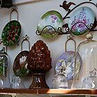 A Gardener's Collection by Sandra Foster
