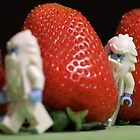 Hide n' Seek in the Strawberry Forest by emmkaycee