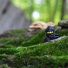 Forest Ninja  by emmkaycee