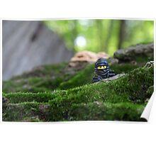 Forest Ninja  Poster