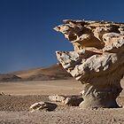 Stone Tree by DianaC