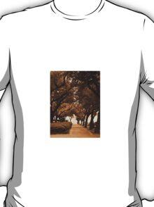 Covered Sidewalk T-Shirt
