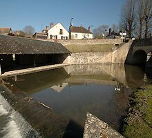 Renne River, St-Romain-sur-Cher, France 2012 by muz2142
