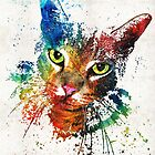 Colorful Cat Art by Sharon Cummings by Sharon Cummings