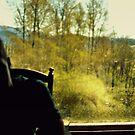 the window by Savannah Regier