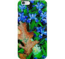 CRESTED DWARF IRIS iPhone Case/Skin