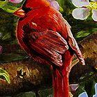 The Cardinal by Mike Pesseackey (crimsontideguy)
