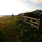 Open Gate by mpstone