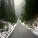 Road to the Mt. Baw Baw Summit by Chris Chalk
