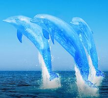 Water dolphins by Hiviral