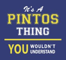 It's A PINTOS thing, you wouldn't understand !! by satro