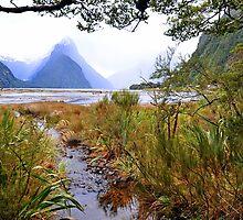 Milford Sound. South Island. New Zealand. by Ralph de Zilva