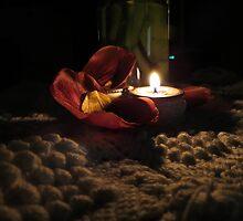 Tulip Remnants....As Is by trueblvr