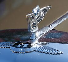 Bentley S1, 1956 by Andreas Theologitis