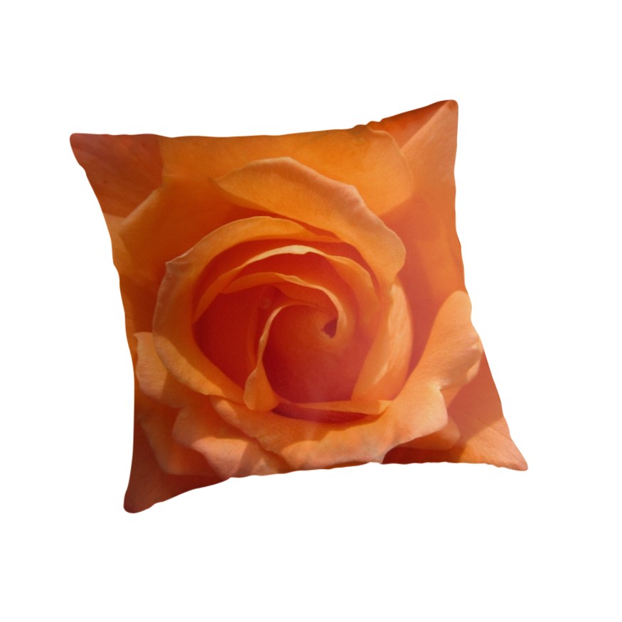 ORANGE ROSE by Colleen2012